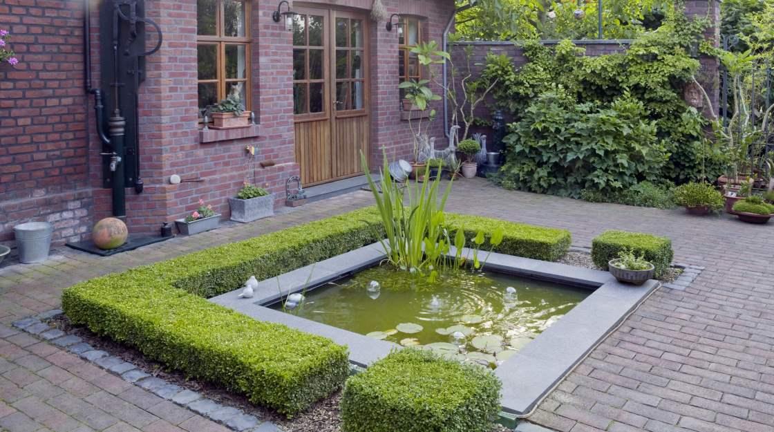 Gartenteichbau richtig planen tipps von meister meister for Gartengestaltung unterschiedliche hohen