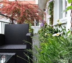 Balkon mit Rattansessel und Pflanzen