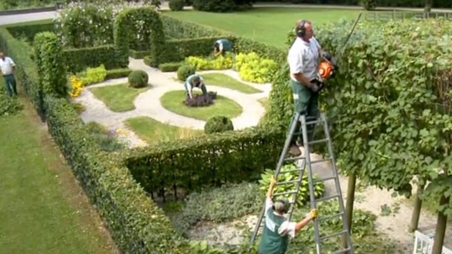Film Gartenpflege