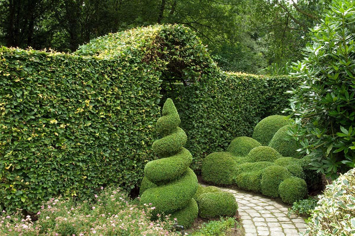 gartenstile - von stadtgarten bis englischer garten, Garten ideen