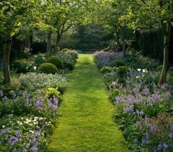 Naturgarten mit Blumen und Buxkugeln