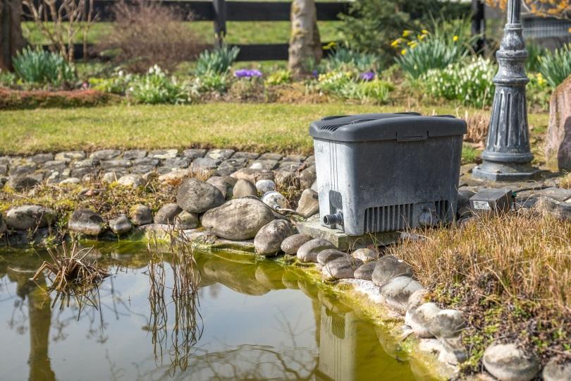 Tipps Fur Die Teichpflege Im Fruhjahr ǀ Meister Meister