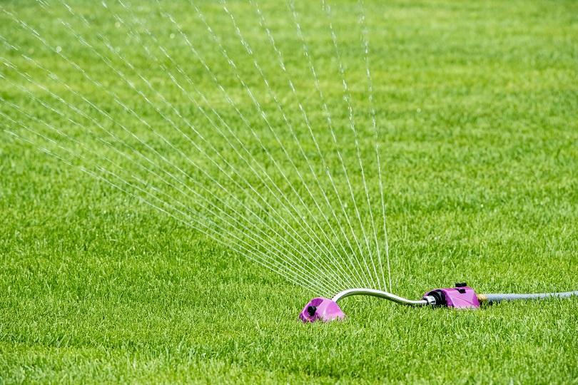 Beregnung des Rasens mit einem Rasensprenger - Viereckregner