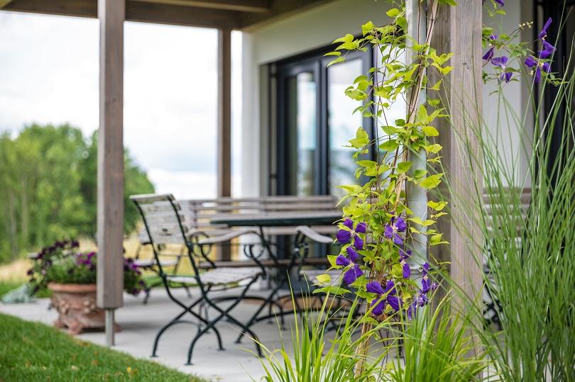 Kletterpflanzen Für Den Garten| Tipps Von Meister & Meister Pergola Bepflanzen Kletterpflanzen