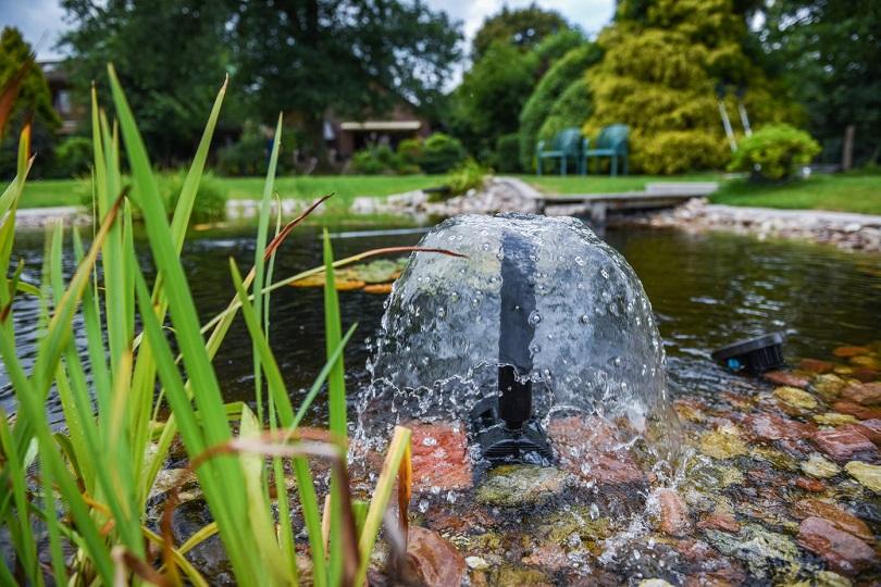 Quellstein im Garten
