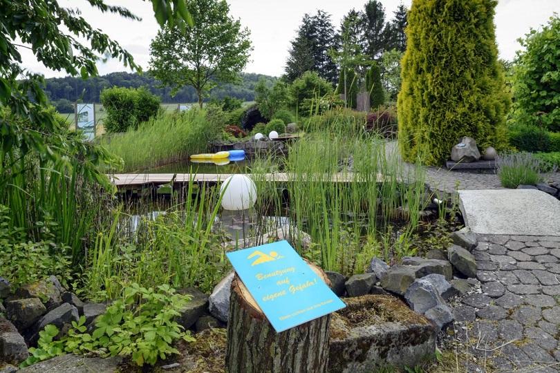 Wasserpflanzen und ihre Pflege